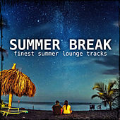 Summer Break van Various Artists