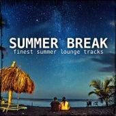 Summer Break by Various Artists
