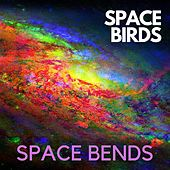 Space Bends by The Spacebirds