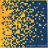 Marigold (Expanded Edition) de Pinegrove