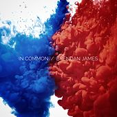 In Common de Brendan James