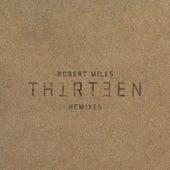 Thirteen Remixes de Robert Miles