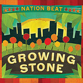 Growing Stone by Nation Beat