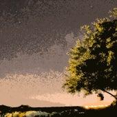 Wonderful World von Cecil Taylor