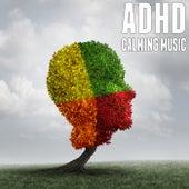 Adhd Calming Music de Various Artists