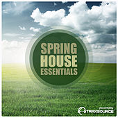 Spring House Essentials by Various Artists