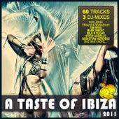 Taste Of Ibiza 2011 - Summer House Anthems von Various Artists