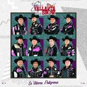 La Víbora Peligrosa by Banda Vallarta Show
