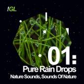 Pure Rain Drops by Nature Sounds (1)