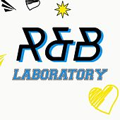 R&b Laboratory von Various Artists