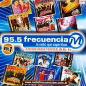 95.5 Frecuencia M by German Garcia
