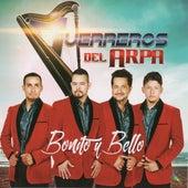 Bonito Y Bello by Guerreros Del Arpa