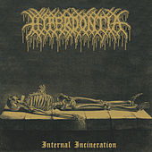 Internal Incineration (Remix) by Hyperdontia