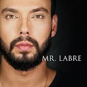 Mr. Labre by Felipe Labre