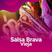 Salsa Brava vieja de Various Artists
