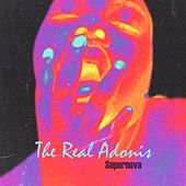 Supernova (Acid Mix) by The Real Adonis