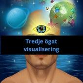 Tredje ögat visualisering von Blandade Artister