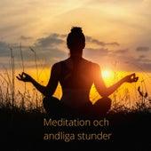 Meditation och andliga stunder von Blandade Artister