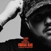 Krossat glas (feat. Nils Pontus) by Anis Don Demina