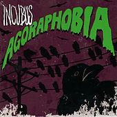 Agoraphobia (Acoustic) by Incubus