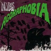 Agoraphobia (Acoustic) von Incubus