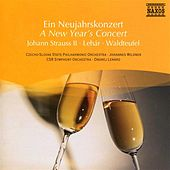 A New Year's Concert by Various Artists
