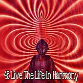 45 Live the Life In Harmony by Musica Relajante