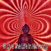 45 Live the Life In Harmony de Musica Relajante