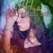 45 Truly Tranquil Sound von Rockabye Lullaby