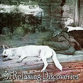 51 Relaxing Discoveries by Deep Sleep Relaxation