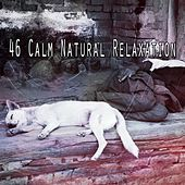 46 Calm Natural Relaxation de White Noise for Babies