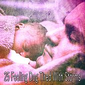 25 Feeling Dog Tired with Storms by Rain Sounds and White Noise