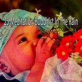 25 Meditation Buddhist in the Rain de Thunderstorm Sleep