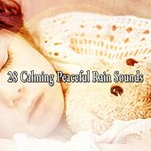 28 Calming Peaceful Rain Sounds by Rain Sounds and White Noise