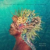 Agua De Estrellas (Mose Remix) di Brenda McMorrow