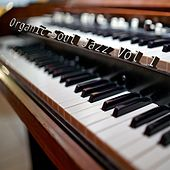 Organic Soul Jazz, Vol. 1 by Clemens Orth Trio