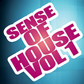 Sense Of House Vol 1 de Various Artists