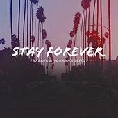 Stay Forever by Ehrling
