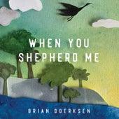 When You Shepherd Me by Brian Doerksen