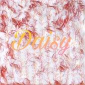 Daisy de Kt Blue