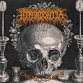 Excavations by Hyperdontia