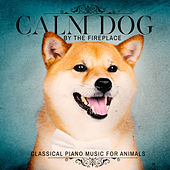 Calm Dog by the Fireplace - Classical Piano Music for Animals by Various Artists