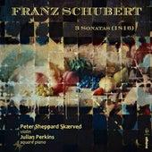 Schubert: Violin Sonatas de Peter Sheppard Skærved