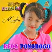 Reog Ponorogo de Madina