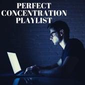 Perfect Concentration Playlist de Various Artists