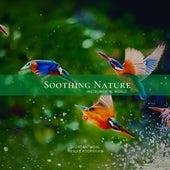 Soothing Nature, Vol. 05 de Giordani Vidal