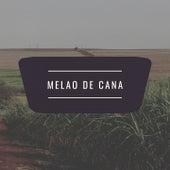 Melao De Cana by Celia Cruz