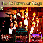 The 12 Tenors on Stage de The 12 Tenors