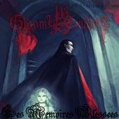 Les Memoires Blessees von Gloomy Erudite
