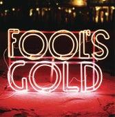 Leave No Trace von Fool's Gold